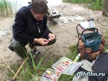 платные пруды в волгограде для рыбалки