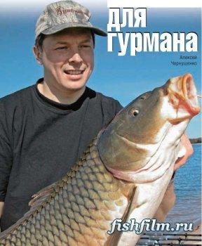 прикормки насадки для рыбалки