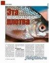 Сборник статей журнала Рыбачьте с нами о плотве