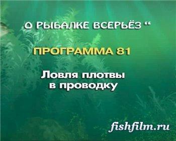 О рыбалке всерьёз ловля плотвы