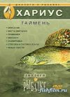 Диалоги о рыбалке. Хариус. Таймень