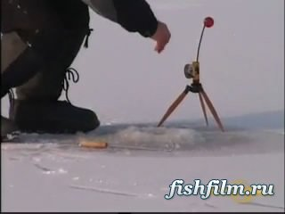 рыбалка на щуку с катушкой нельма