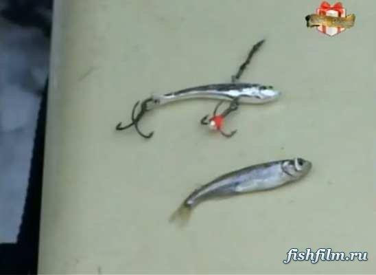 клевое место охотник и рыболов