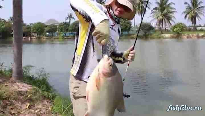 Телепрограмма все про рыбалку