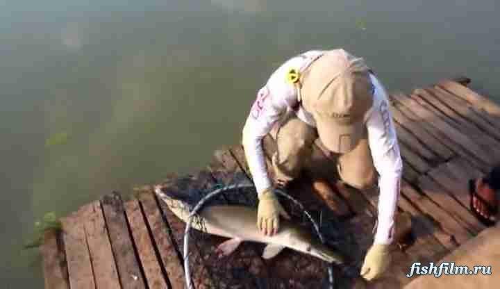 рыбалка на руси видео нас есть